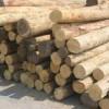 木材蛇口进口到龙冈